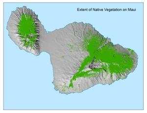Extents of Native Vegitation on Maui