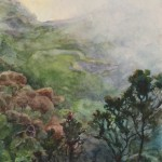 Fog Rolls into the East Maui Watershed by Katharine Ayers